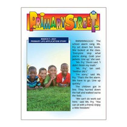 Primary Street Teacher