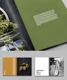 A Year in Cannabis_main.jpg