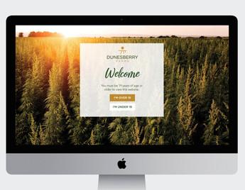 Dunesberry Farms Website_main_edited.jpg