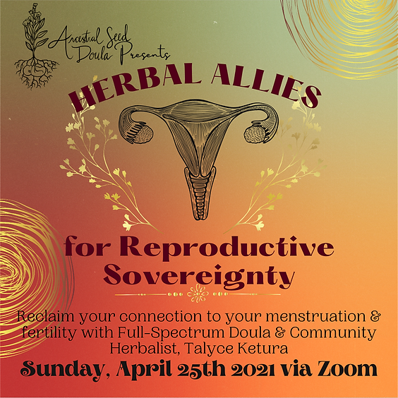 Herbal Allies for Reproductive Sovereignty