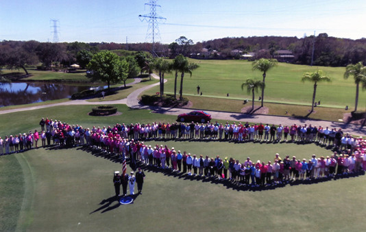 2014 Drive for a Cure