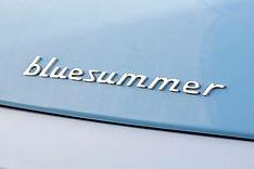 Blue summer 46 (1).jpg