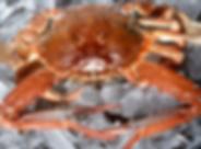 Cracking Crab.png