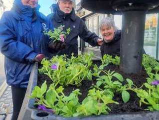 Plymouth's Waterfront getting a blooming beautiful makeover