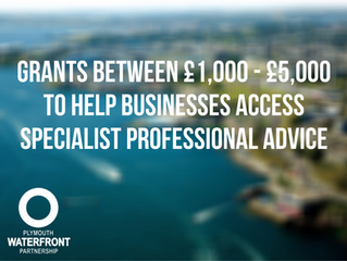Grants between £1,000 - £5,000 to help businesses access specialist professional advice