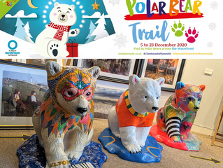 Winter on the waterfront: polar bears, light displays, fine food and great shopping