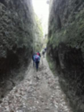 Vie Cave.jpg