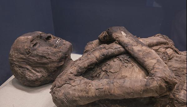 múmia exposta.png