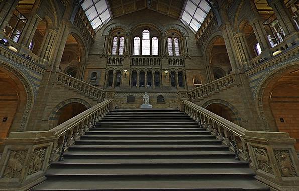 museu_de_história_natural.png