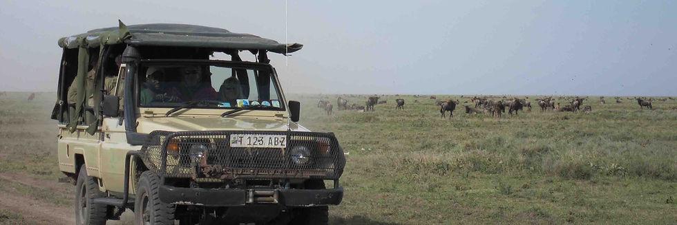 Safari land cruiser with wildlife rangers on patrol, in savanna grasslands with wildebeest herd.