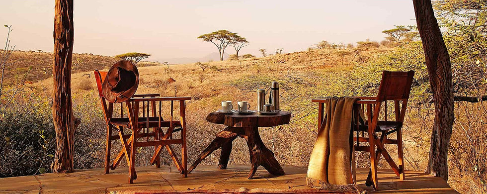 View from safari camp lodge terrace across low grassland with acacia tree, with tree table & 2 director chairs.