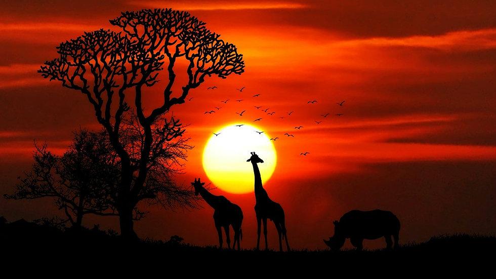 Namibia - 9 notti