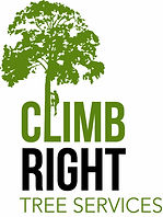 tree removal, tree care, tree pruning, tree cutting, tree trimming, mulching, mulch, tree services, tree cutter, hedge trimming, tree clearing