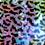Thumbnail: Purple Chameleon