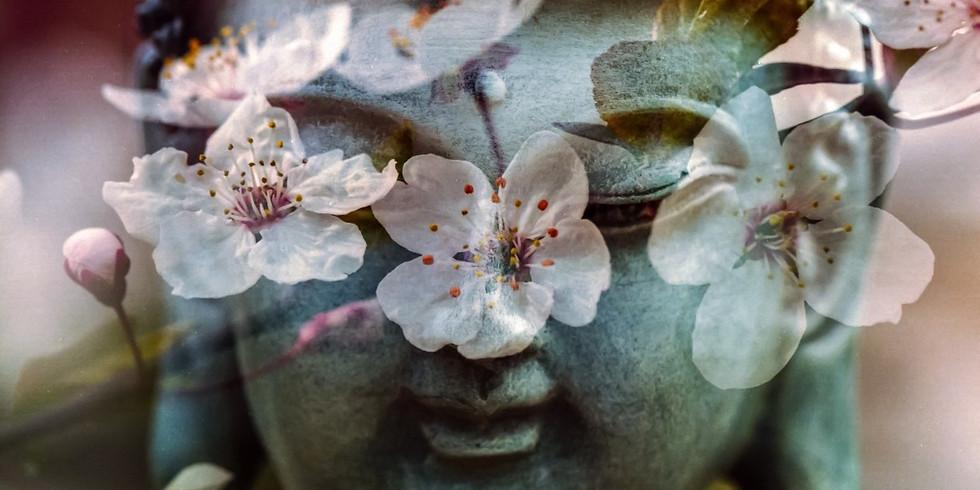 Méditation collective + Soin chamanique
