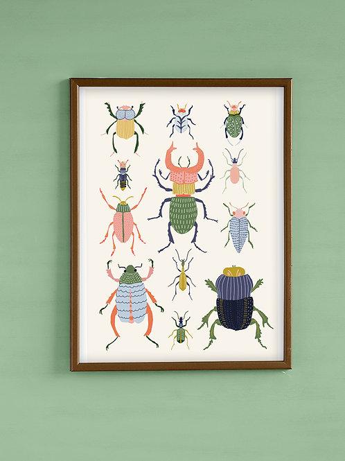 פוסטר חיפושיות
