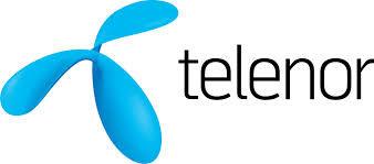 telenor logo.jpeg