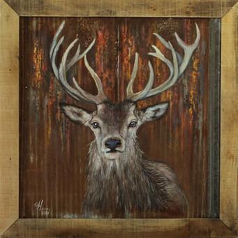 Rusty Buck