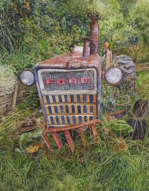 Roadside Ford