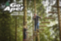 tree-top-adventure-for-11095847.jpg