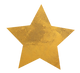 Star icon for wix-55.png