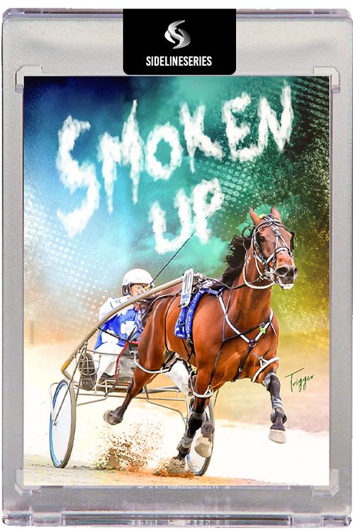 Smoken Up - Trainer/Driver Auto