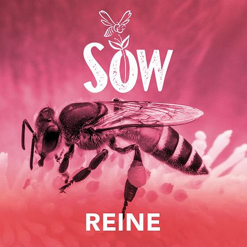 Membership Reine (FRENCH)