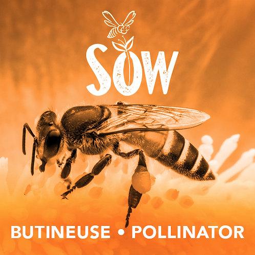 Membership Butineuse/Pollinator