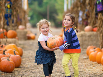 PATCH WORK: Seven Skills Kids Can Master While Picking Pumpkins