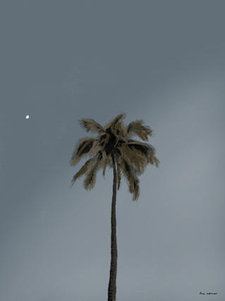 """La luna me saluda"""