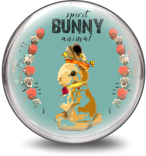 Bunny Spirit Animal