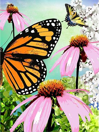 jennifer_geiger_butterflies.png