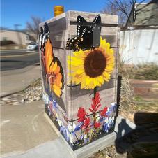 City of Thornton Colorado Utility Box Art Wrap