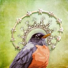 Queen Mother Robin