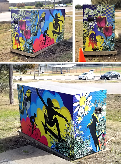 Cedar Creek Texas Brushy Creek Park Art Box