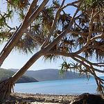Coral Beach Walk
