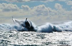 Big_wave_3_resize
