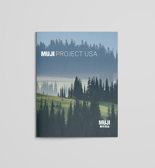 Project USA.jpg