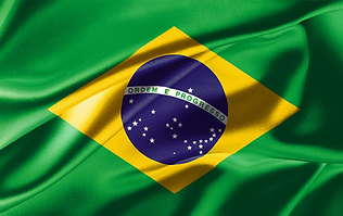 Brasilienflagge_Web.png