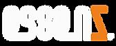 essenz logo 2021.png