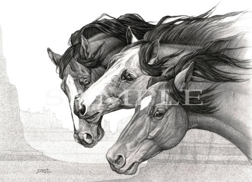 FERAL'S HORSES