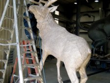 "THE MAKING OF ""HIGH DESERT ELK"" – Part 6"