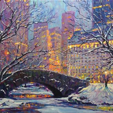Central Park Winter Dusk