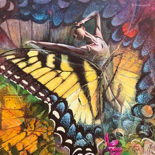 YellowTail Dancer
