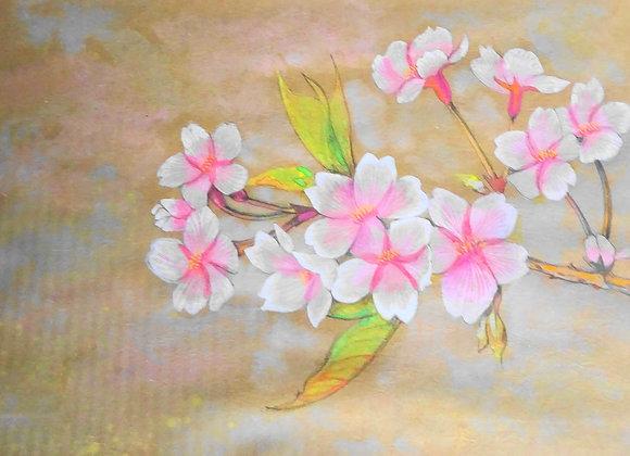『桜』土江政美 :作