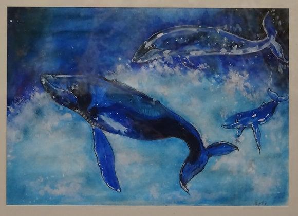 『クジラ』 今岡凜太郎:作