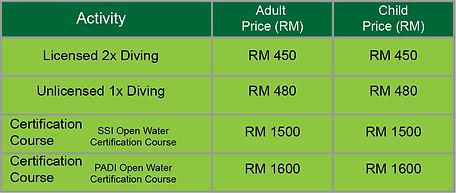 diving platform price.jpg