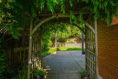 Enchanting Pathways
