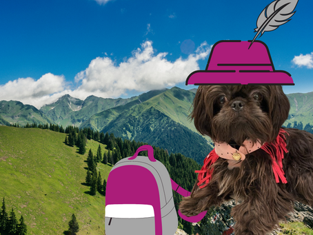 Ruby Recommends: Pleasant Hill Hikes with your Hound