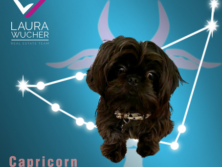Hey Astrology Fans—or Curious Pet Lovers!